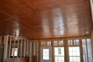 Luan ceiling panels
